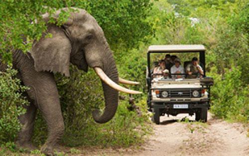 <h5><strong>TURISMO</strong></h5>Sudáfrica es la economía turística más grande de toda África