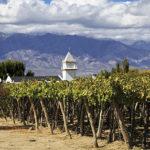 COMEX<br>Argentina exportó en 2019 su mayor volumen de vino en 6 años