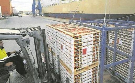 La Unión Europea confirma la invasión de naranjas de Sudáfrica y Egipto